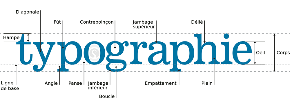Anatomie d'une typographie